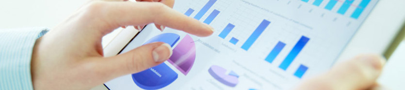 Statistical/Data Analysis Services in India